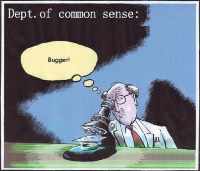 dept-common-sense