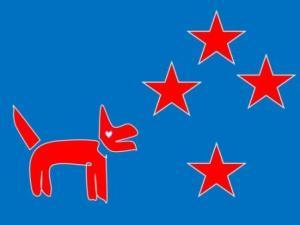 flag 7